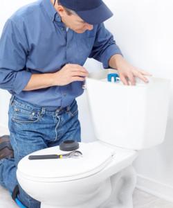 img-toilet-250x300